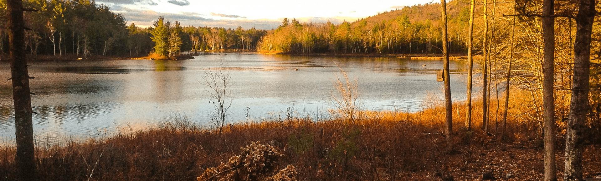 Spring on Lees Pond