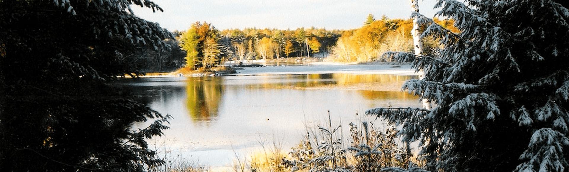 Winter on Lees Pond